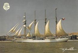 Esmeralda (Chili) - Quatre-mâts Goélette En Acier - Photo Jo Gauthier - Carte Grand Format (12x17), Non Circulée - Voiliers