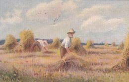 RURAL - HARVEST TIME . - Farms