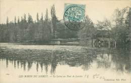 45 - LES BORDS DU LOIRET - Le Loiret Au Pont De Lorette - France