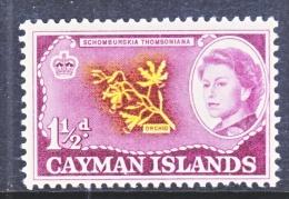 CAYMAN ISLANDS  155  *  FLOWER  ORCHID - Cayman Islands