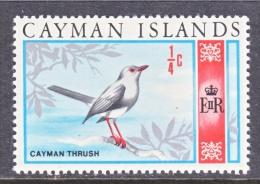 CAYMAN ISLANDS  262   *   FAUNA  BIRD - Cayman Islands