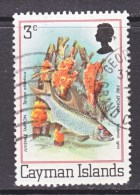 CAYMAN ISLANDS  452   (o)  SEA  LIFE  SPONGES - Cayman Islands
