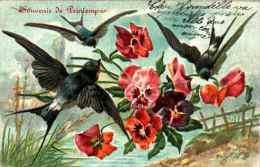 Gaufrée, Embossed - Hirondelles Pensées, Souvenir De Printemps - Uccelli