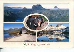 (PH 228) Australia - TAS - Cradle Mountain - Wilderness