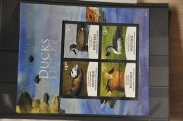 N 262 ++ GRENADINES OF ST.VINCENT 2014 BIRDS OISEAUX VOGELS DUCK CANART EEND MNH ** - St.-Vincent En De Grenadines
