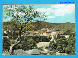 SAINT-AMBROIX (Gard) VUE GÉNÉRALE. - Saint-Ambroix