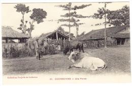 Cochonchine - Une Ferme - Viêt-Nam