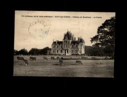 44 - NORT-SUR-ERDRE - Château - Vaches - Nort Sur Erdre