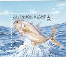 Ascension Hb 58 - Sellos