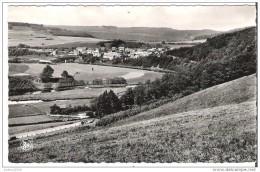 DOHAN S/SEMOIS - Panorama - Oblitération De 1965 - Trou D´épingle Au Dessus, Au Centre - Bouillon