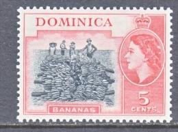 DOMINICA  147  *  BANANAS - Dominica (...-1978)