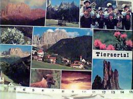 TIRES  BOLZANO VOLPE  STELLE ALPINE  BANDA MUSICALE    N1980 EL7580 - Bolzano (Bozen)