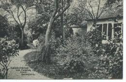 (A817) Auwel. Schänkwirtschaft Zum Paradis. Gartenpartie. PRACHTKAART. - Other