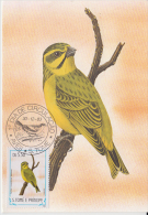 S. TOME E PRINCIPE  1983  Birds  CANARIO  Maximum Card # 55819 - Songbirds & Tree Dwellers