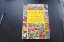 Les Merveilles De La Nature - Livres, BD, Revues