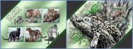 nig14207ab Niger 2014 Wildcats 2 s/s