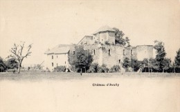 BRENTHONNE CHATEAU D´AVULLY CARTE PRECURSEUR ANIMEE - Zonder Classificatie