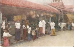 COLOMBO : Inheemse Store Of Shop. Levendige Postkaart Hapering Buffalo. - Sri Lanka (Ceylon)