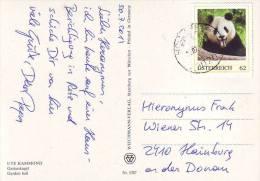 781e: Briefmarke Großer Panda Auf Postkarte Gest. 31.07.2014 PA 2020 Hollabrunn - Bären