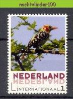 FG208 PERSOONLIJKE POSTZEGEL PERSONAL STAMP FAUNA VOGELS BIRDS VÖGEL AVES OISEAUX NEDERLAND PF/MNH - Birds