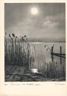 SUISSE Photo - Photographie Walter Niessen Unused Excellent état - Photographie