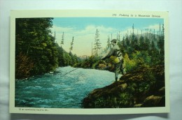 Fishing In A Mountain Stream - Etats-Unis