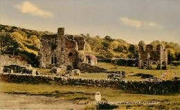 Irlande - Louth - Mellifont Abbey - Boyne Valley - Abbaye - Bon état - Louth