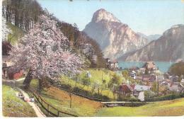 AK 981  Traunkirchen - Verlag Brandt Um 1913 - Traun