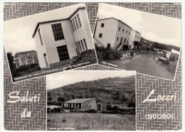 SALUTI DA LOCERI - NUORO - 1962 - Nuoro