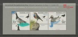 NEDERLAND, 1994, MNH Stamp(s) Block, Fepapost-birds,  Nr(s). Bl 41, #5593 - Period 1980-... (Beatrix)