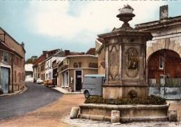 51 - Ambonnay : La Fontaine - CPM Neuve - Francia