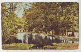 Salmon Pond - Tasmania - Autres