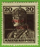 Voyo ARAD (HUNGARY) 1919 Y#24 * MH - Neufs