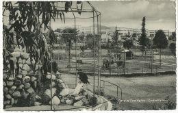 Cochabamba Parque Zoologico Zoo  Edicion  Bazcal Casilla 1961 - Bolivien