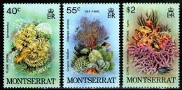 MONTSERRAT: N°411/413 **    - Cote 3,45€ -