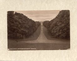 47917   Regno  Unito,   Long Walk,  Shewing  Windsor  Castle,  NV - Windsor Castle