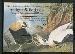 Antigua ** Bloc N° 104 - JJ Audubon,ornithologue. Oiseaux - Antigua And Barbuda (1981-...)