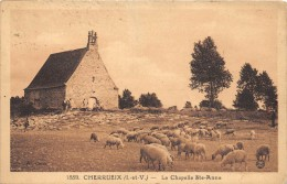 CPA 87 CHERRUEIX LA CHAPELLE (cliché Pas Courant - Francia