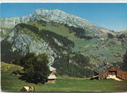 CPSM 74  PETIT BORNAND CENISE ET ROCHER DE LESCHAUX 1973  Grand Format 15 X 10,5 - Frankrijk