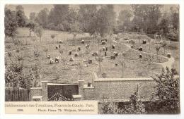 E3479  -  FOURON - LE -COMTE  -  Etablissements Des Ursulines  -  Parc  *1908* - Voeren
