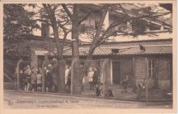 Kalmthout   Diesterweg 's Openluchtschool School Te Heide    In Het Hoenderen        Scan 8042 - Kalmthout