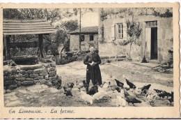 EN LIMOUSIN  LA FERME PAYSANNE ET SES POULES - France