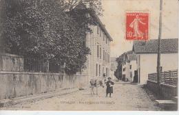 PAYS BASQUE - USTARITZ - Rue Du Quartier Hiribéhéria ( Garçon Avec Sa Mule ) - Frankrijk