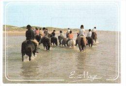 REF 188  : CPSM 59 Retour Sur Le Littoral De La Manche Equitation Sur Plage - Bray-Dunes