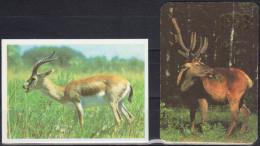 Russia 1990,1993  2 V  Elk,  Deer, Antelope - Calendarios