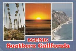 BF18736 Southern California Multi Views USA  Front/back Image - Maui