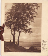 1930´s Sepia Birthday Card Many Happy Returns Trees Landscape Ribbon - Géographie