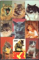 USSR 1990, 1991 Belarus 1997   9 V  Cat Cats Chat Chats - Calendari