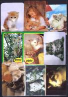USSR, Belarus 9 V  Cat Cats Chat Chats - Calendari