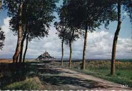 * * Baie Du MONT ST-MICHEL * * ( Carte Non écrite ) - Le Mont Saint Michel